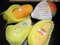 Mango00